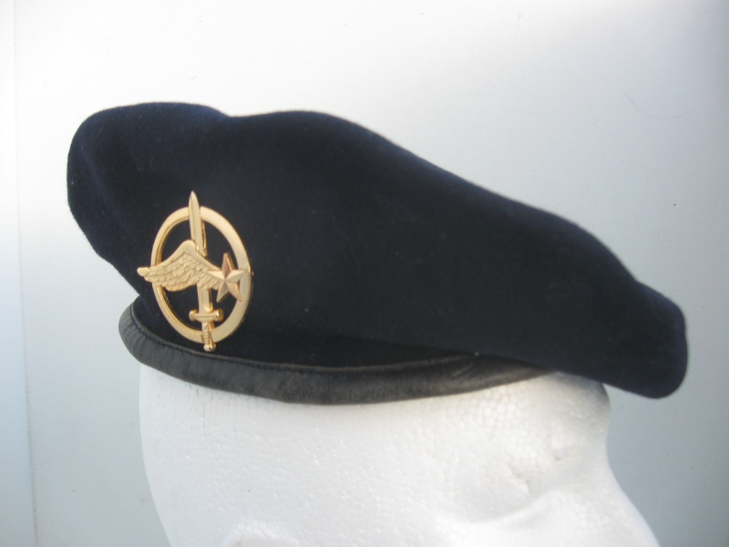 Les insignes de béret dans l'armée française Img_6737