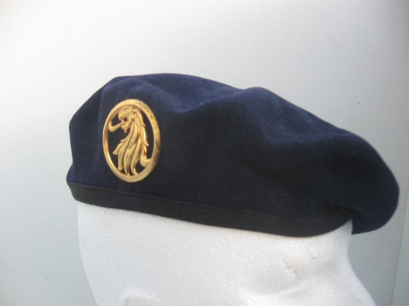 Les insignes de béret dans l'armée française Img_6738