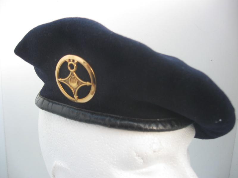 Les insignes de béret dans l'armée française Img_6739