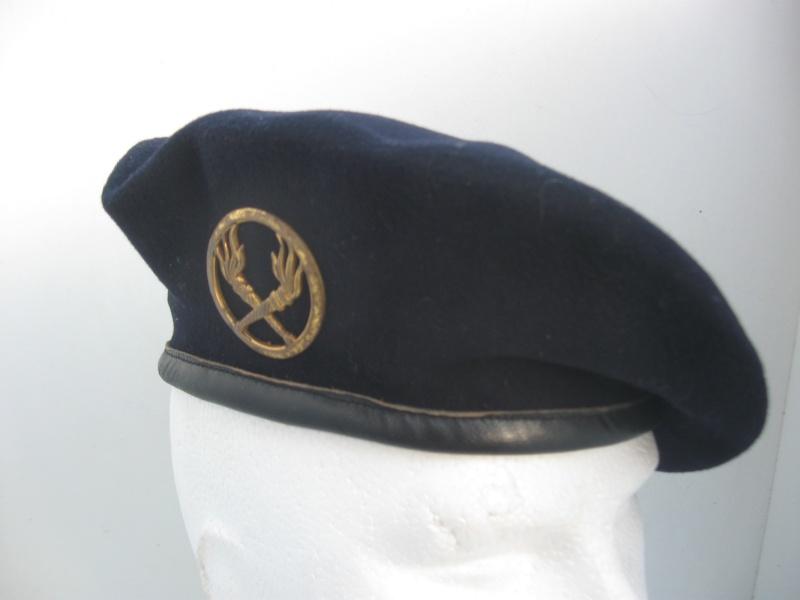 Les insignes de béret dans l'armée française Img_6740