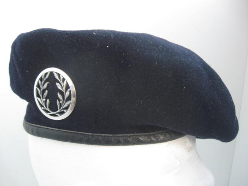 Les insignes de béret dans l'armée française Img_6742