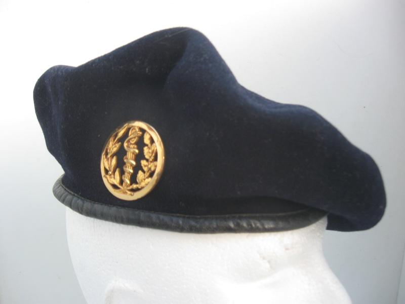 Les insignes de béret dans l'armée française Img_6743