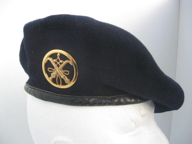 Les insignes de béret dans l'armée française Img_6744