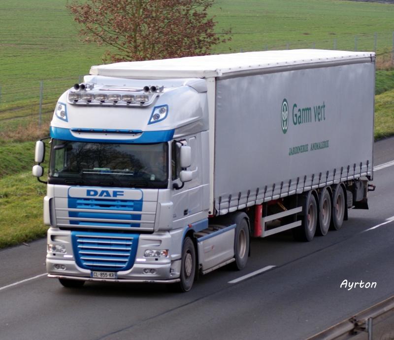 Gamm Vert (75) Dsc03522