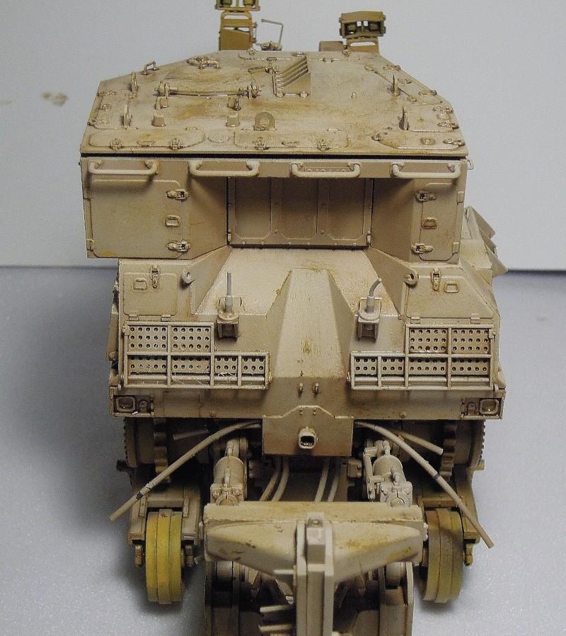 D9R meng model 1/35 Dscn6747