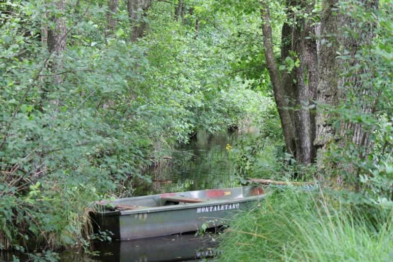 votre fleuve, rivière, lac ect... 14882410