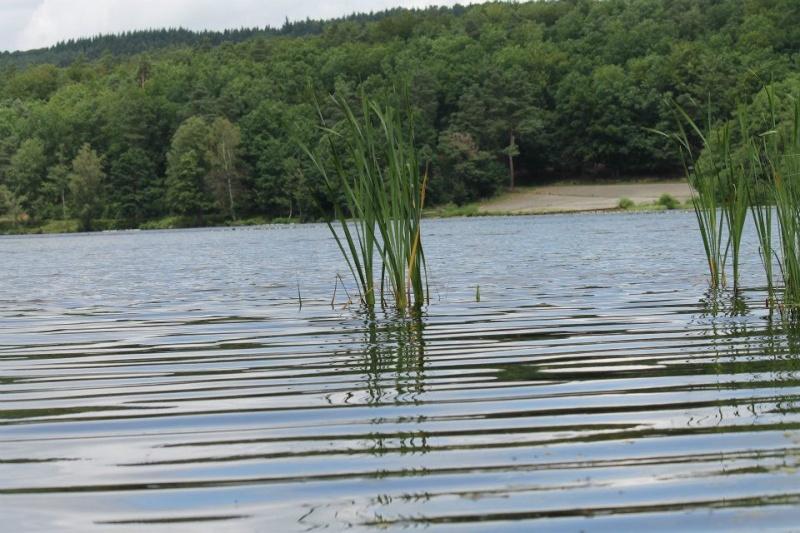 votre fleuve, rivière, lac ect... 29238410