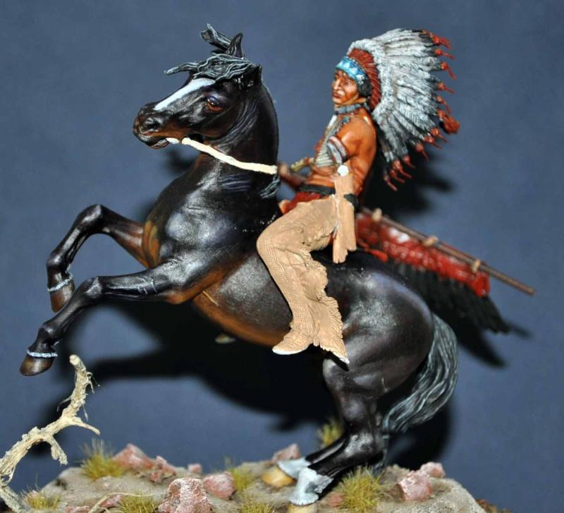 Chef sioux tribu des Lakotas- 90 mm PEGASO. La fin Dsc_0054
