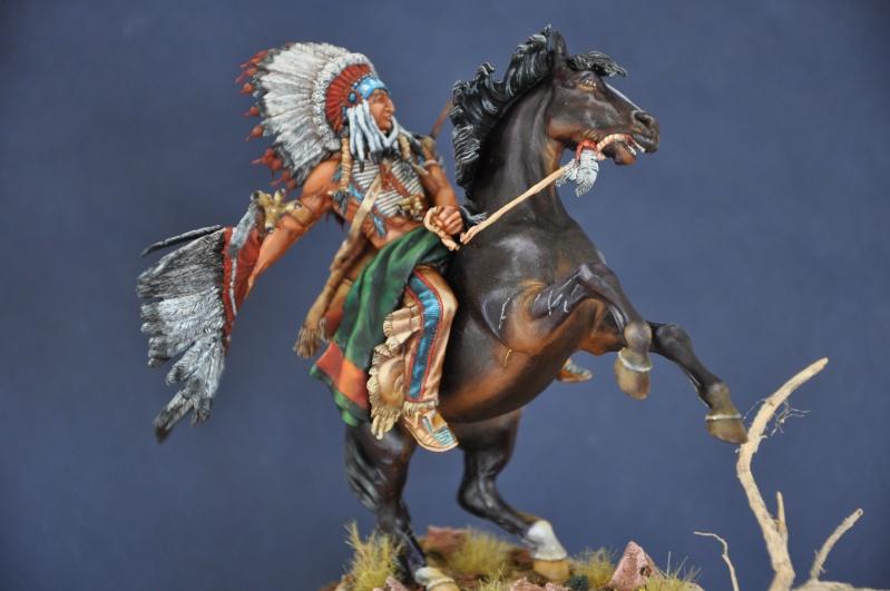 Chef sioux tribu des Lakotas- 90 mm PEGASO. La fin Dsc_0076