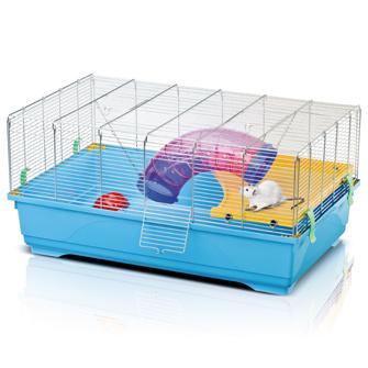 cage de vacs , quarantaine ? Cage17