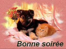 bonne nuit !!! - Page 51 59058_10