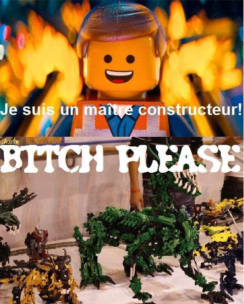[Fans-Arts] Les Memes Bionifigs - Page 6 Trollc11