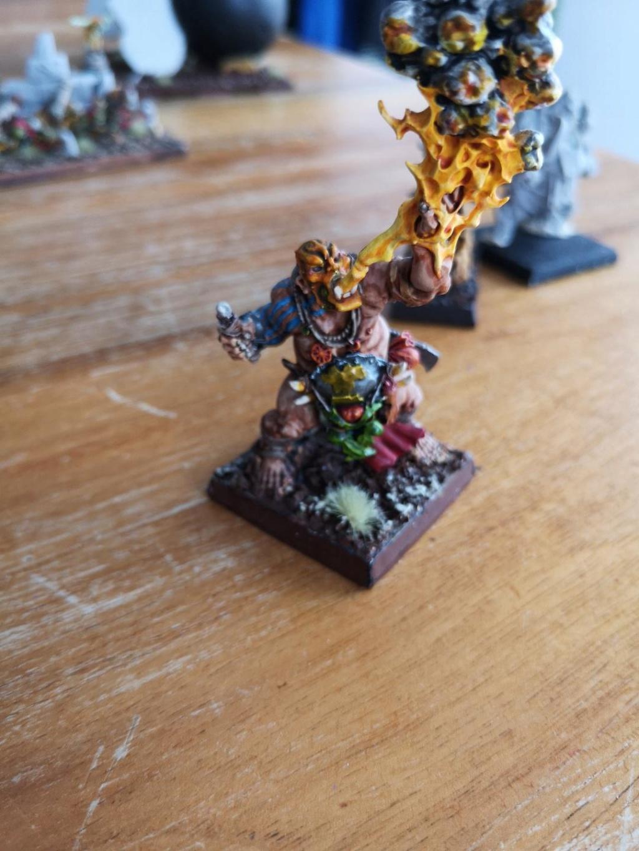 A vendre Ogres !  Vf10