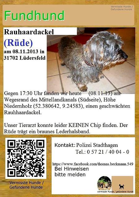 31702 Lüdersfeld: Dackel gefunden Dackel10