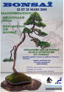 Avignon (84) les 22 et 23 mars 2014 expo bonsai 14032310