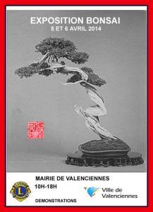 Valencienne (59) les 5 et 6 avril expo bonsai 14040510