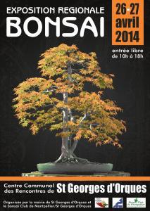 St Georges d'Orques (34) les 26 et 27 avril 2014 expo bonsai 14042610