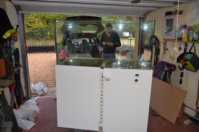 mes poissons poussent les murs pour 430 litres Dsc_0422