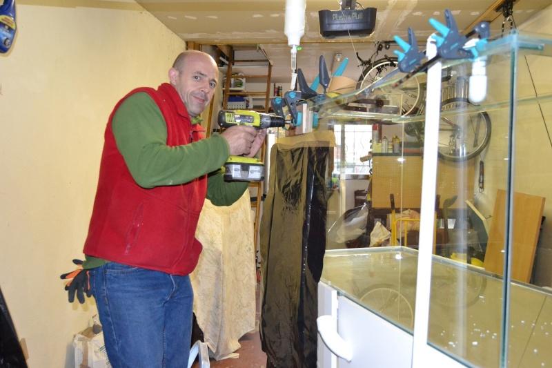 mes poissons poussent les murs pour 430 litres Dsc_0432