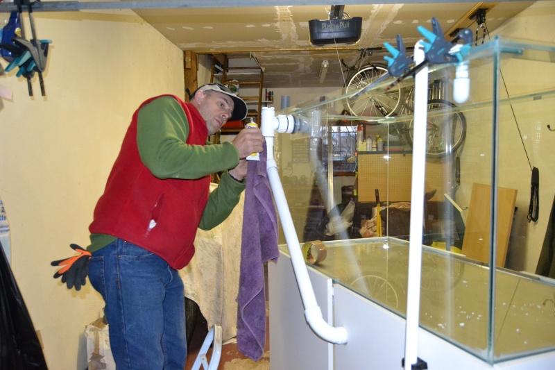 mes poissons poussent les murs pour 430 litres Dsc_0442
