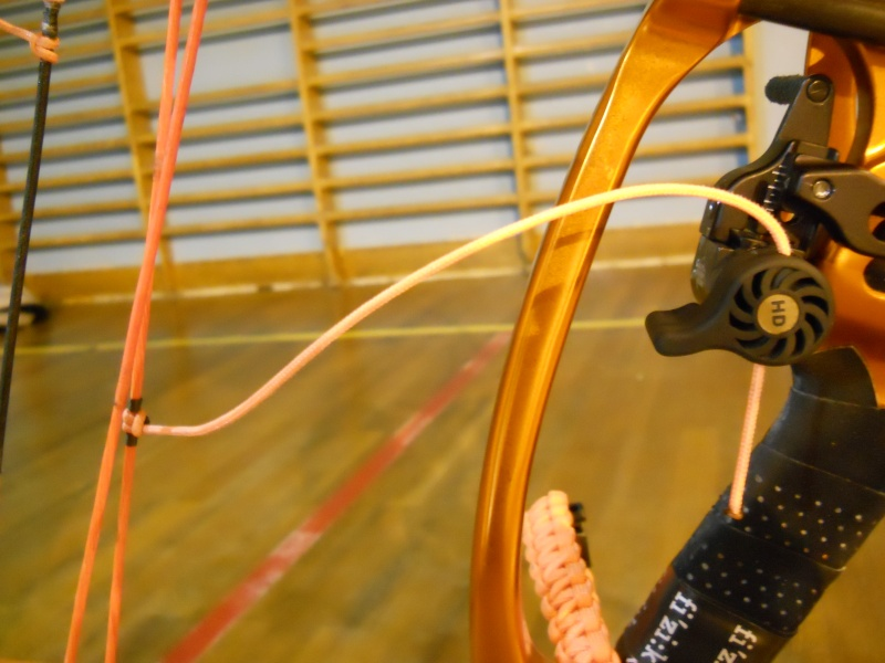 limb driver ultra elite ou Qad hdx. Dscn3321