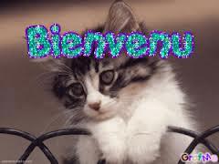 présentation Bienve11