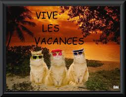Escapade italienne... Chats_10