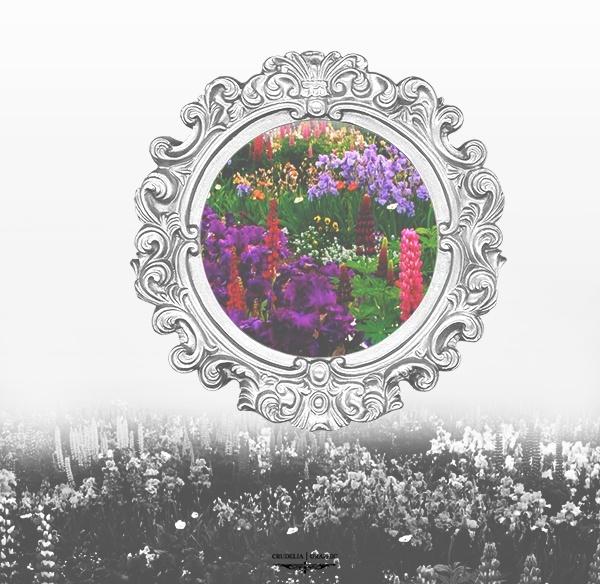 خامات براويز فلكتورية - خامات براويز - خامات مرايا - خامات خيالية - صفحة 3 00810