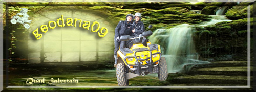 [ A Vendre Quad Can Am Outlander 800 xt] - Page 2 Bannie14