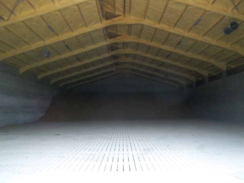 Petitpom construit un hangar à pdt ! Imgp4111