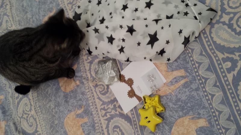 Photos - Mini SWAP des étoiles plein les yeux [5/5 photos postées] 20140211