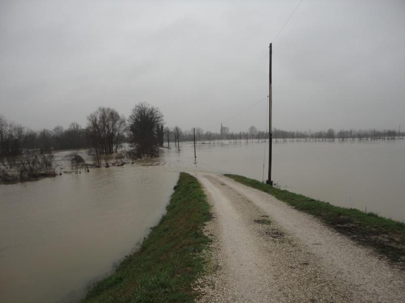 Alluvione a Padova Dsc01819