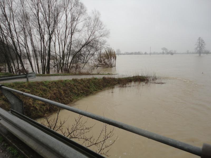 Alluvione a Padova Dsc01820