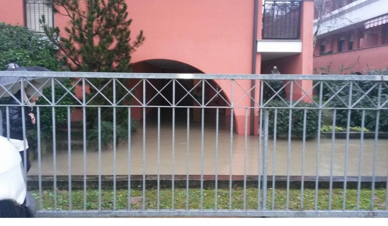 Alluvione a Padova Tigli10