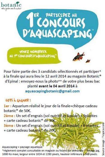 1er Concours aquascaping Botanic Epinal 6975_510