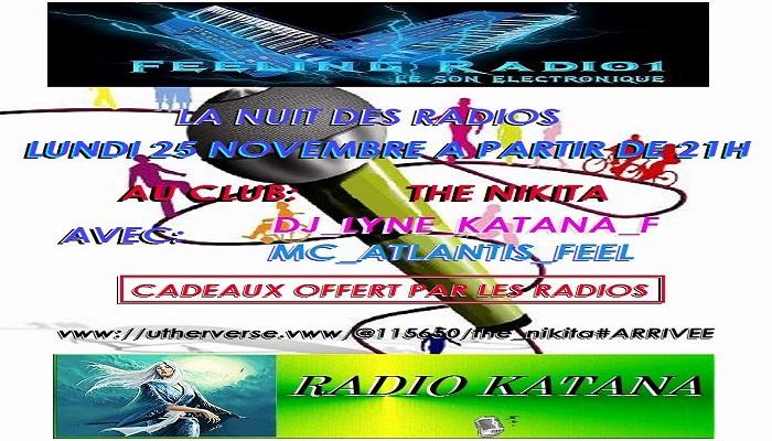 LA NUIT DES RADIOS Soiree10