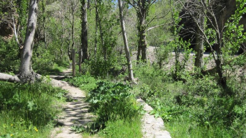 """Salida Domingo 25 de mayo de 2014 """"Ruta fluvial """"Desiderio"""" por el río Arcos"""". Arcos de las Salinas. Teruel. Sender10"""