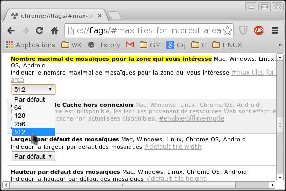 Accélérer Google Chrome Accala10