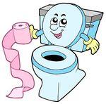 FAITS DIVERS INSOLITES - Page 4 Toilet10