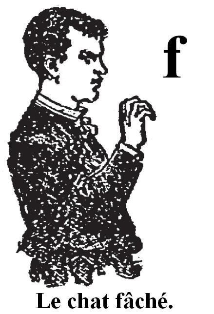 Les consonnes comme obstacles à l'apprentissage de la lecture? F_chat10