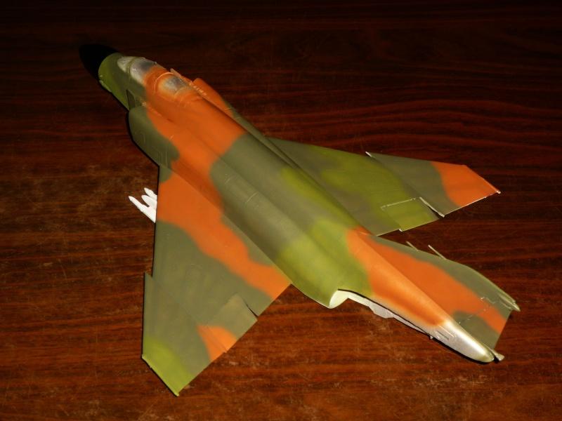 F-4 C/D Phantom II  [ REVELL ]  (Montage et Peinture terminés). P1080611