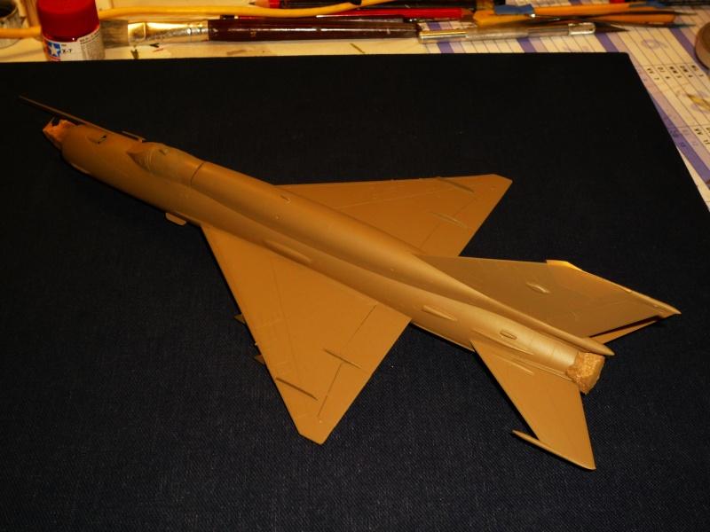 MiG-21 SMT Fishbed-K  [ EDUARD ] (Montage en cours) - Page 2 P1080822