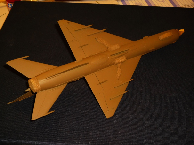 MiG-21 SMT Fishbed-K  [ EDUARD ] (Montage en cours) - Page 2 P1080824