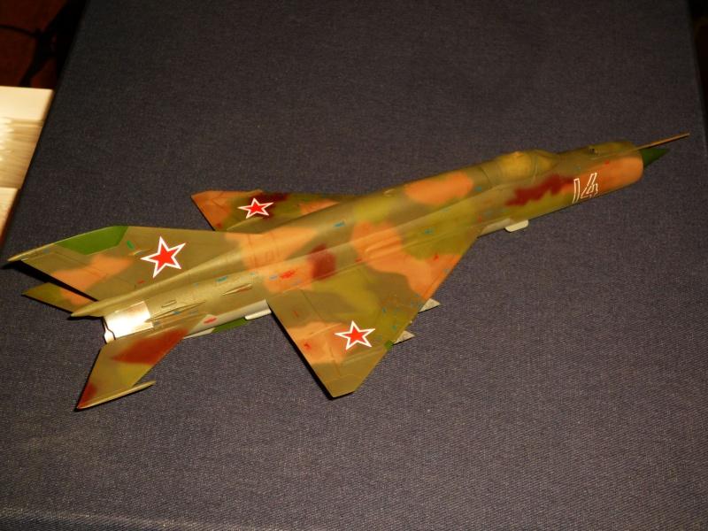 MiG-21 SMT Fishbed-K  [ EDUARD ] (Montage en cours) - Page 4 P1080837