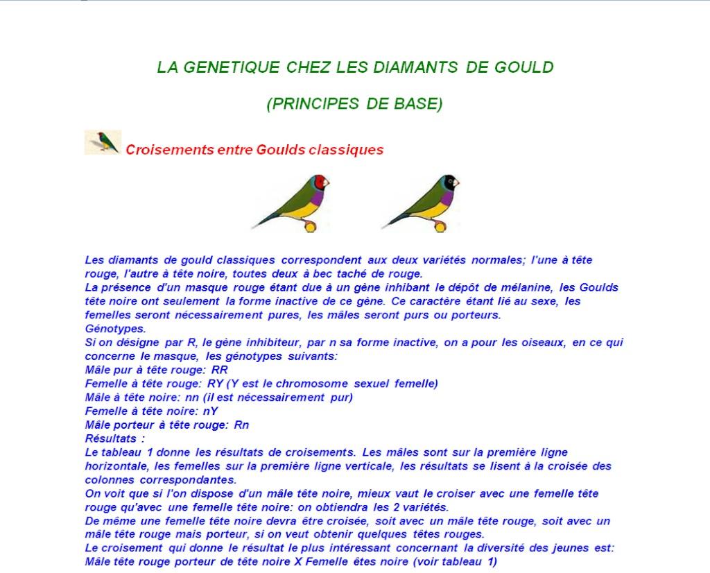La Génétique chez le Diamant de Gould Gana_g10