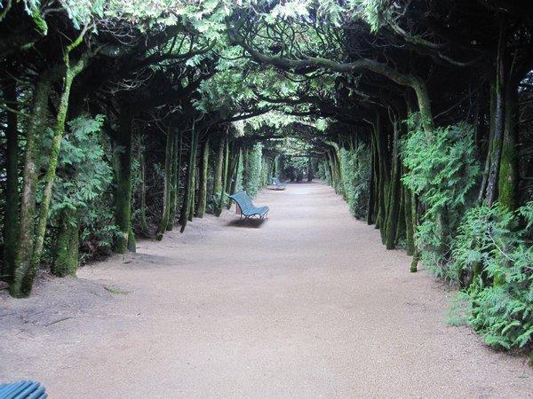 Jardins et Château de Hautefort Cl1310