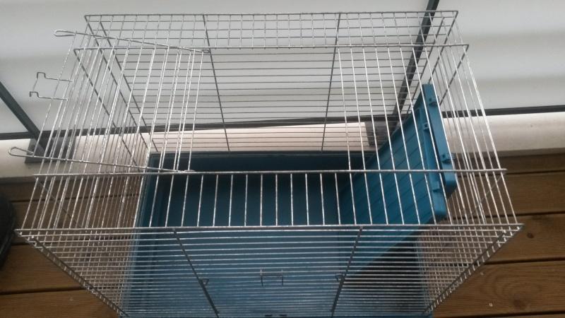 Cherche cage pour 2 ratounes  20140411