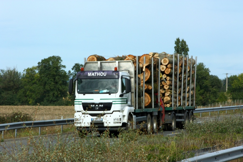 Mathou (Gages 12) Img_9725