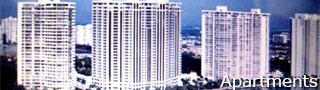CSI: Miami RPG Catego19