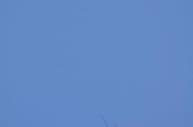 Test de l'écran à flat Aurora flatfield Flat_d10